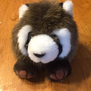 Other - No Arm Raccoon